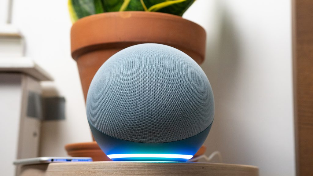 The Amazon Echo 4th gen with the light glowing and a snake plant in the background.