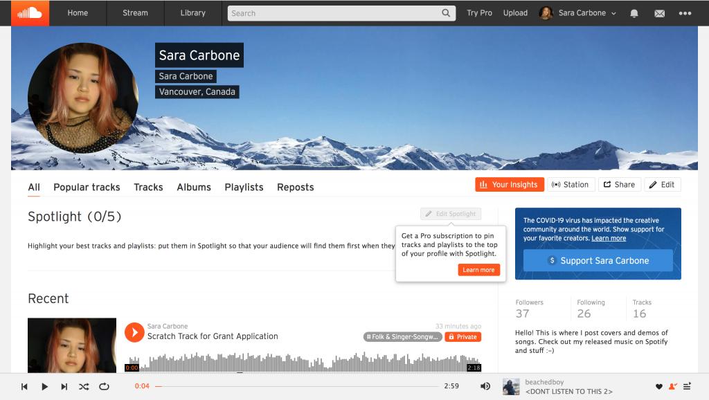 Screenshot of SoundCloud interface profile editor.